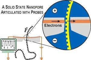 NanoporeProbeRecording